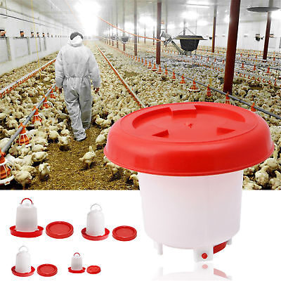 Chicken Feeder Drinker Poultry Feed Water Waterer Automatic Drink Bird Grid CU