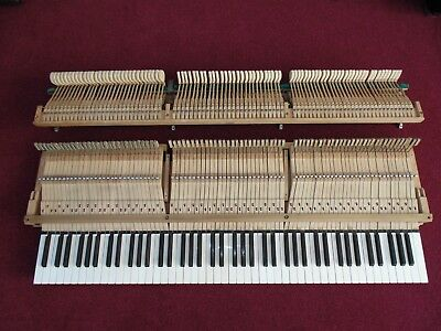 1930s Broadwood Baby Grand Action Perfect Condition Requires Full Regulation Now