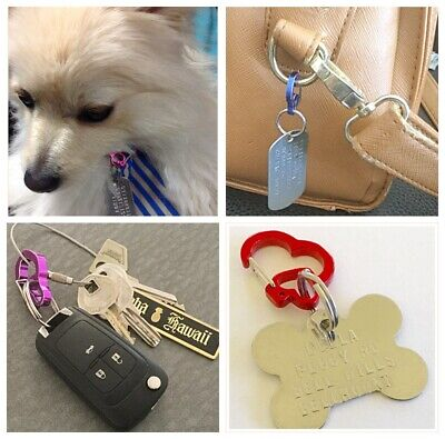 Itag Clip Rubit Dog Pet-Secure Id Tag Holder-Quick Release Switch Tag To Collar