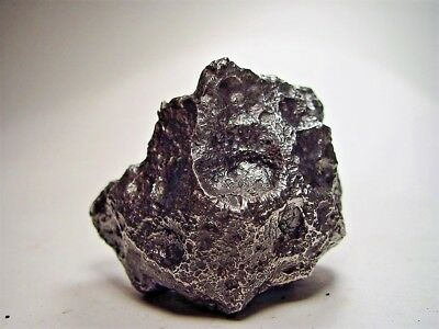 Museum Quality! Lots Of Thumbprints! Best New Campo Del Cielo Meteorite 1084 Gms
