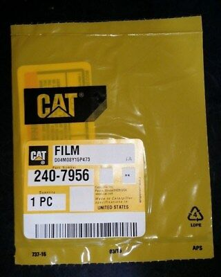 Cat Warning Film Decal  240-7956