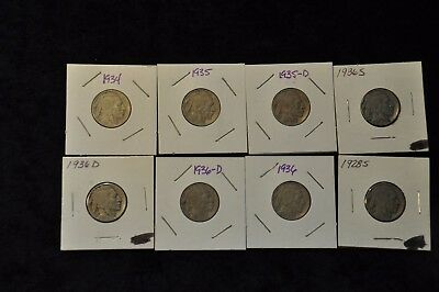 Buffalo Nickels Group Lot Of 8  Mixed Dates. Great Lot!