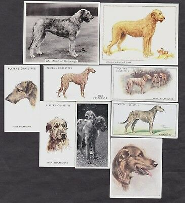 9 Different Vintage Irish Wolfhound Tobacco/Candy Dog Cards Lot