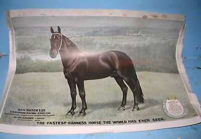 International Stock Food Veterinary Medicine Poster Sign with Dan Patch Horse