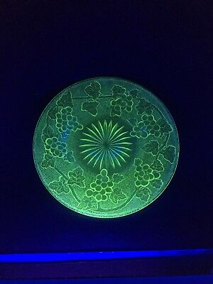 "Green Vaseline Depression Glass  ARBOR GRAPE 8"" Plate Indiana Uranium"