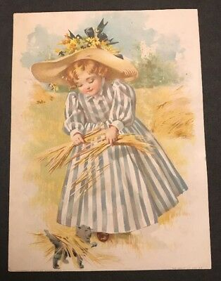 1893 Lion Coffee Advertising Victorian Trade Card