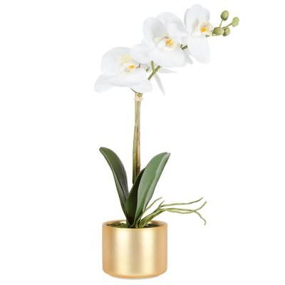 NEW White Phalaenopsis Orchid In Luxe Pot 41Cm By Freedom