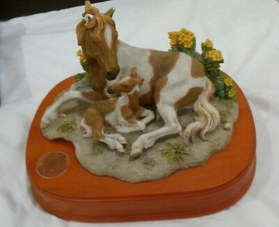 National geographic Society Wildlife Collection Horse Music Box
