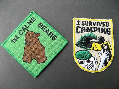 Boy Scouts Canada 2 Humorous Survived Camping 1St Calne Bears Patches