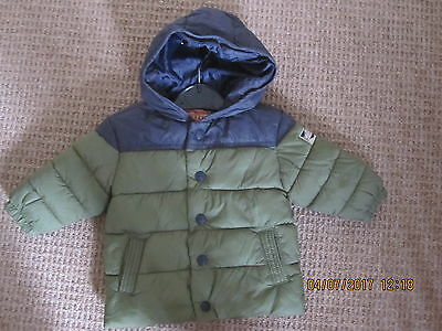 Baby Boy - Padded Jacket - Next - 3-6 Months