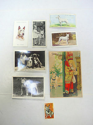 Bull Terrier Cigarette Cards Vintage Advertisement Postage Stamp Lot of 8 Items
