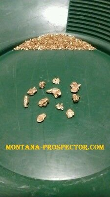 4 Lb Gold Nugget Ultra Rich %100 Unsearched Pay Dirt (Montana) 1