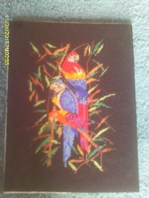 Handmade Cross Stitched Picture of Three Colorful Tropical Parrots Birds