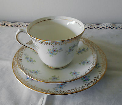 Salisbury England Forget Me Not Trio Pattern No. 1462 Bone China C 1950's