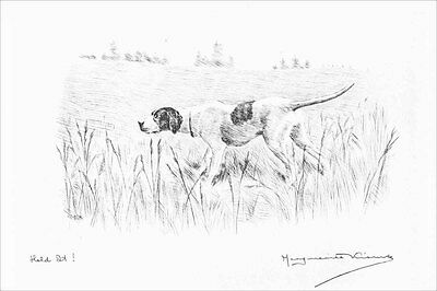 Pointer Dog 1930 Marguerite Kirmse Drawing 8 LARGE New Blank Note Cards