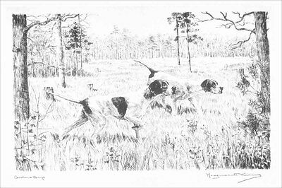 Pointer Dogs 1929 Marguerite Kirmse  8 LARGE New Blank Note Cards