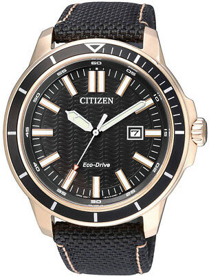Citizen Eco-Drive Gold Tone Stainless Steel Nylon Strap Mens Watch AW1523-01E
