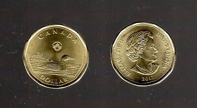 2017 Loonie Design Dollar  Circulation Coin From The Roll   Mint Cond