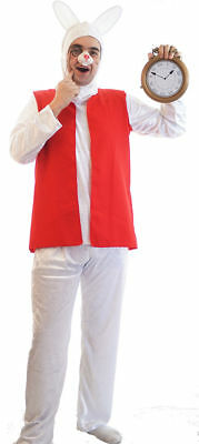 World Book Day-Panto-Alice in Wonderland THE WHITE RABBIT Costume ALL AGES