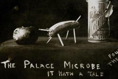 "Vintage 1909 Postcard -""THE PALACE MICROBE UPON KINGS TABLE 10/10/09""-Political?"