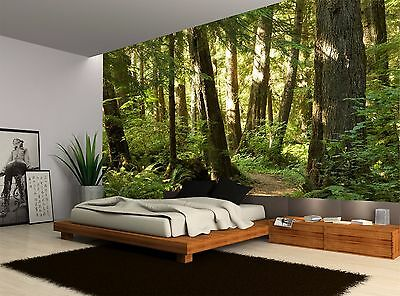 Forest Trees Plants Trees Wall Mural Photo Wallpaper GIANT WALL DECOR