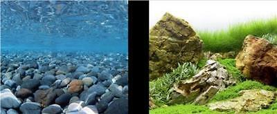 poster fond d aquarium river rock sea of green double face 45.7cm x 7.62m