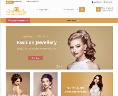 Established JEWELRY eCommerce STORE 60%-200% Profit Website Business - Dropship