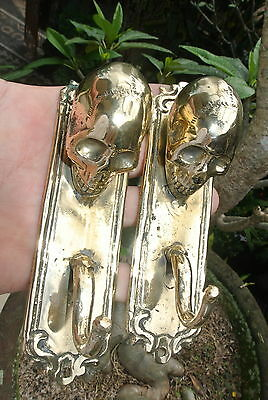 """2 small polished SKULL HOOKS BRASS old vintage style antique 6 """" long B"""