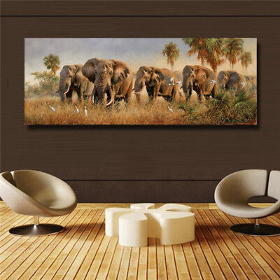 Beautiful Elephant Family HD print on canvas huge wall picture 16x43(in)