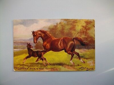 THOROUGHBRED MARE & FOAL - artist signed Harry Payne