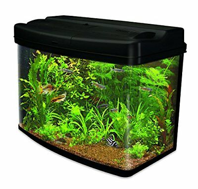 Interpet Fish Pod 120L Aquarium Tank Complete Set Up Coldwater Tropical