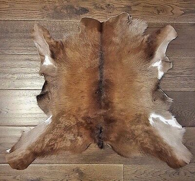 Exotic Cowhide Rugs Real Hair-On Fur Leather Natural Cow Skin Peau vache 34x38""