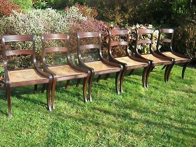 Regency Bar Back Dining Chairs with Sabre Legs - set of 6 - Mahogany