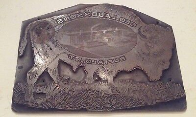 Antique Buffalo Copper Engraving Printing Plate Block Geo. Laubssons Buffalo NY
