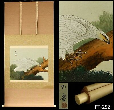 """White Hawk on Pine Tree"" Hanging Scroll Signed -Japan- Late 20th Century"