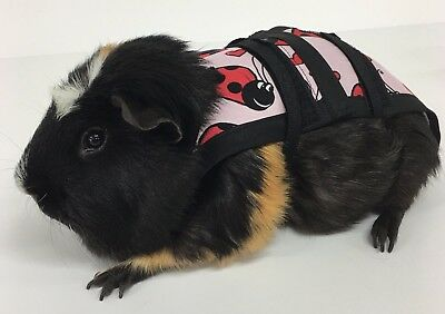 Piggy Pants Guinea Pig Diapers-Pink Lady Bugs***FREE SHIPPING***