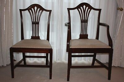 Antike Stuehle Hepplewhite ca. 1795 Mahogany, Dining Chairs / Esszimmer Stühle