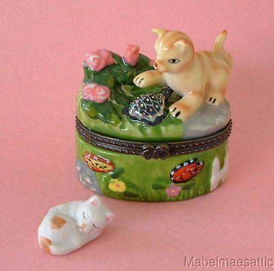 New Handpainted Yellow Tabby Cat Kitten & Turtle in Garden Porcelain Hinged  Box