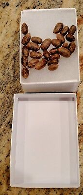 25 Cleaned Mason Bee Cocoons, Examined 4 Pests, Guaranteed: Both Males/Females