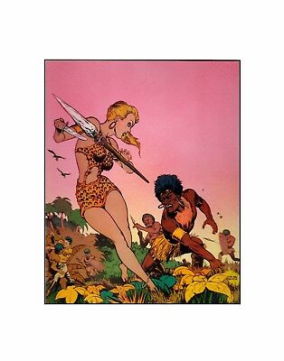 Sheena, Queen of the Jungle Fiction House Golden age comics adventure sericel