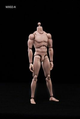 MX02-A 1/6 Scale Europe Skin Male Figure Body Model Toys Fit Head with Neck