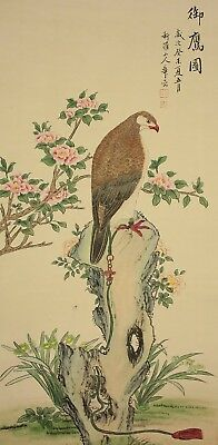"""CHINESE HANGING SCROLL """"Flowers and Hawk on Rock""""  @u189"""