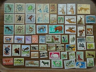 60 different  ANIMALS  on  STAMPS