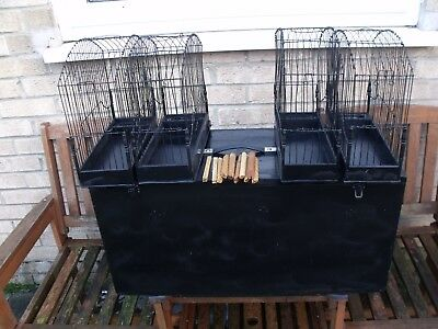 Border Canarie    Show   Cages And Carry Box.