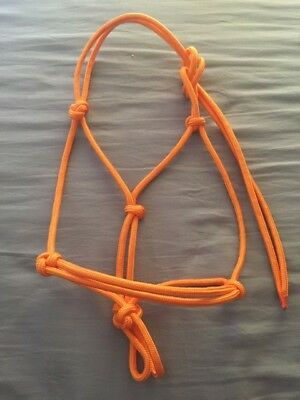 Roped Horse Halters