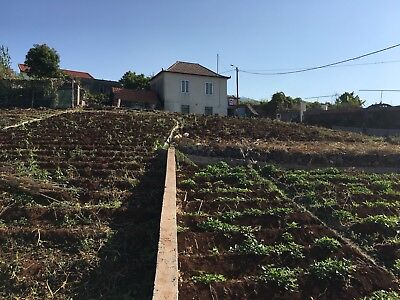 Property, Old Cottage For Sale In Portugal, Madeira Reduced