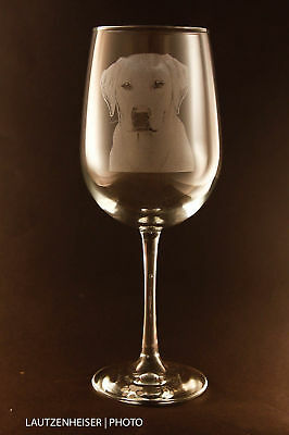 Etched Labrador Retriever on Elegant White Wine Glasses - Set of 2