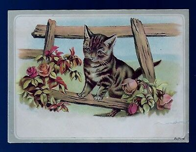 Vegetable Cough Compound late 1800's medicine trade card - Geo. Swett- cat image