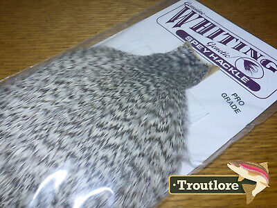Whiting Farms Grizzly Spey Hackle Rooster Cape Whole New Tying Neck
