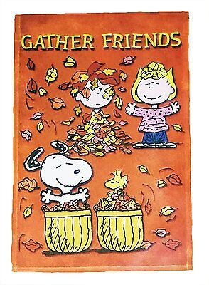 Charlie Brown Garden Flags Home Design Ideas And Pictures